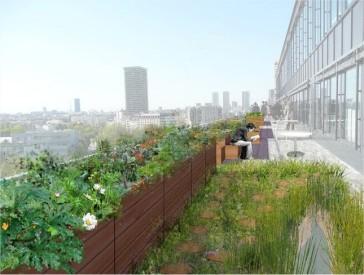 serre_agriculture_urbaine